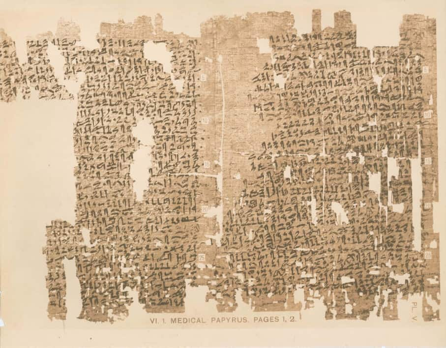 kahun medical papyrus