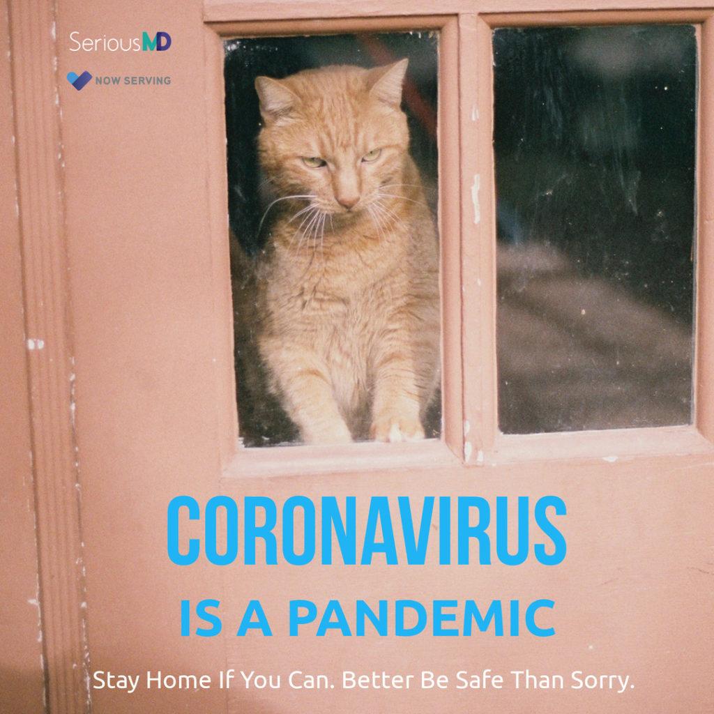 stay home corona virus